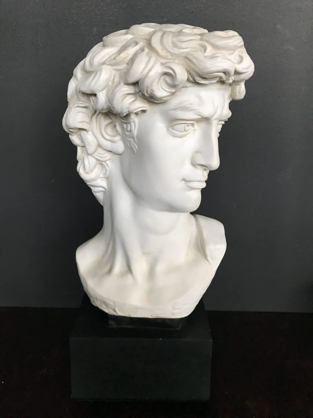 Large Bust Of David The Savoy Flea